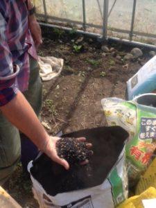 仙台くまっこ農園を訪ねて、野菜たちを見てきました!